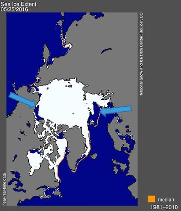 Arctic Sea Ice Extent in May 2016